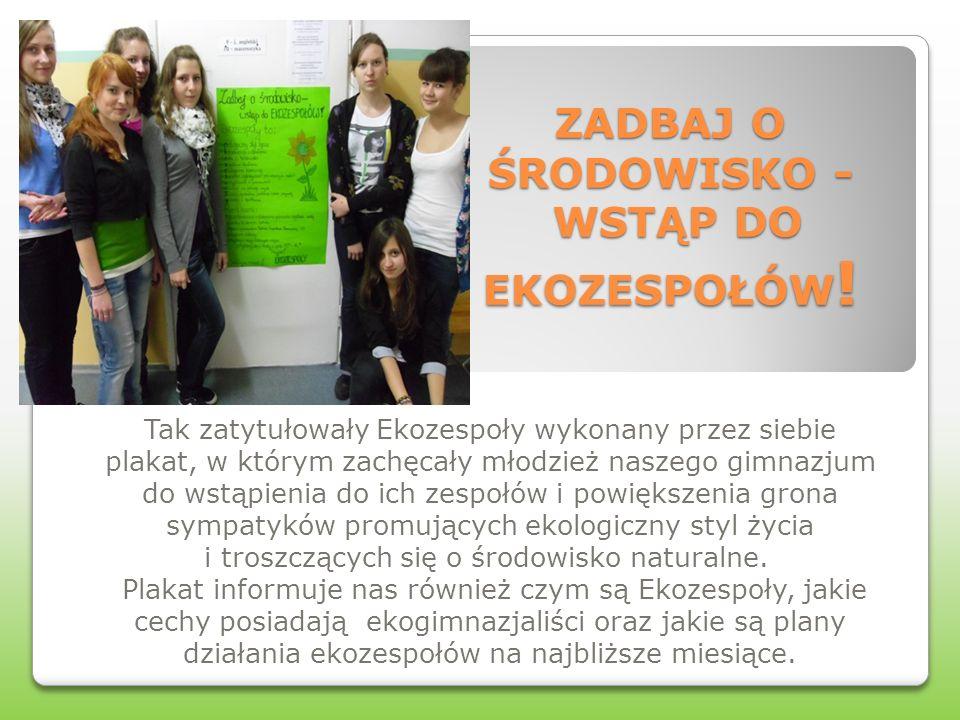 ZADBAJ O ŚRODOWISKO - WSTĄP DO EKOZESPOŁÓW ! Tak zatytułowały Ekozespoły wykonany przez siebie plakat, w którym zachęcały młodzież naszego gimnazjum d