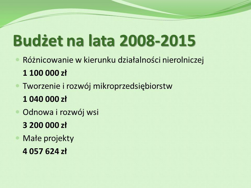 Budżet na lata 2008-2015 Różnicowanie w kierunku działalności nierolniczej 1 100 000 zł Tworzenie i rozwój mikroprzedsiębiorstw 1 040 000 zł Odnowa i rozwój wsi 3 200 000 zł Małe projekty 4 057 624 zł