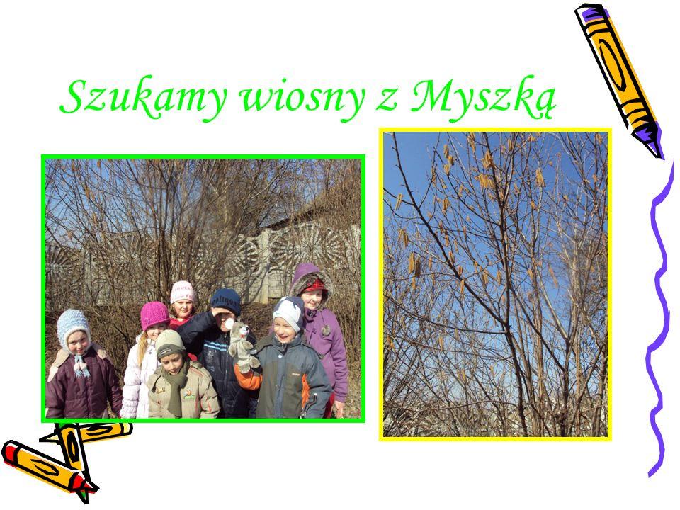 Szukamy wiosny z Myszką