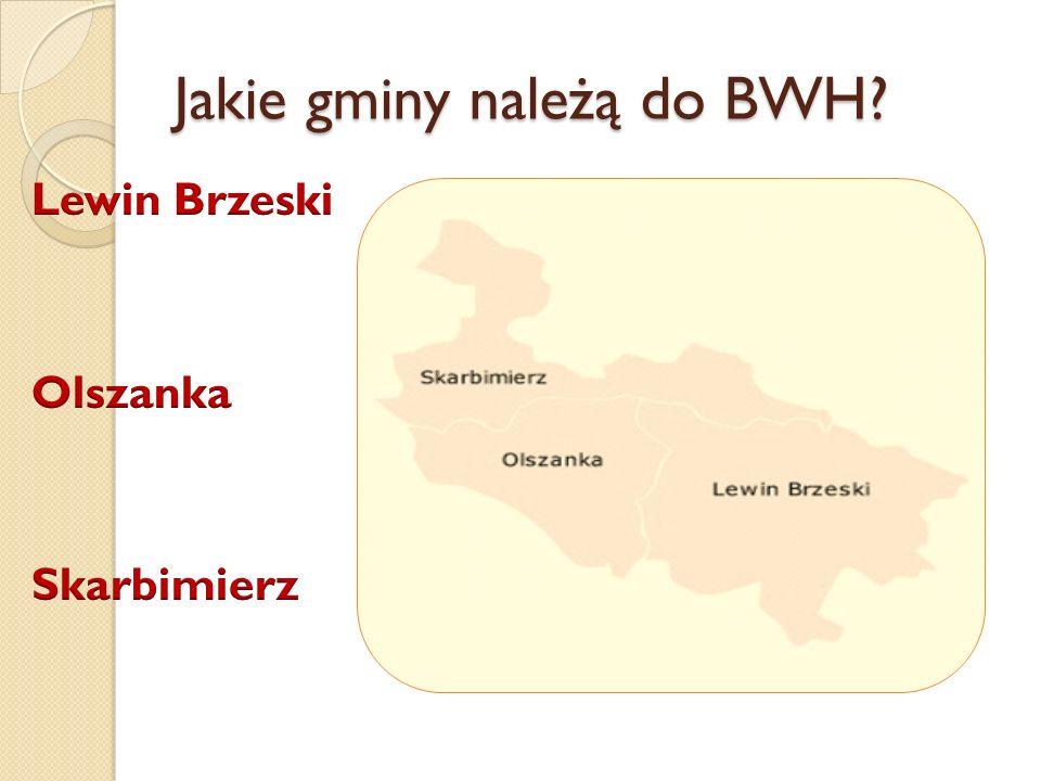 Jakie gminy należą do BWH?