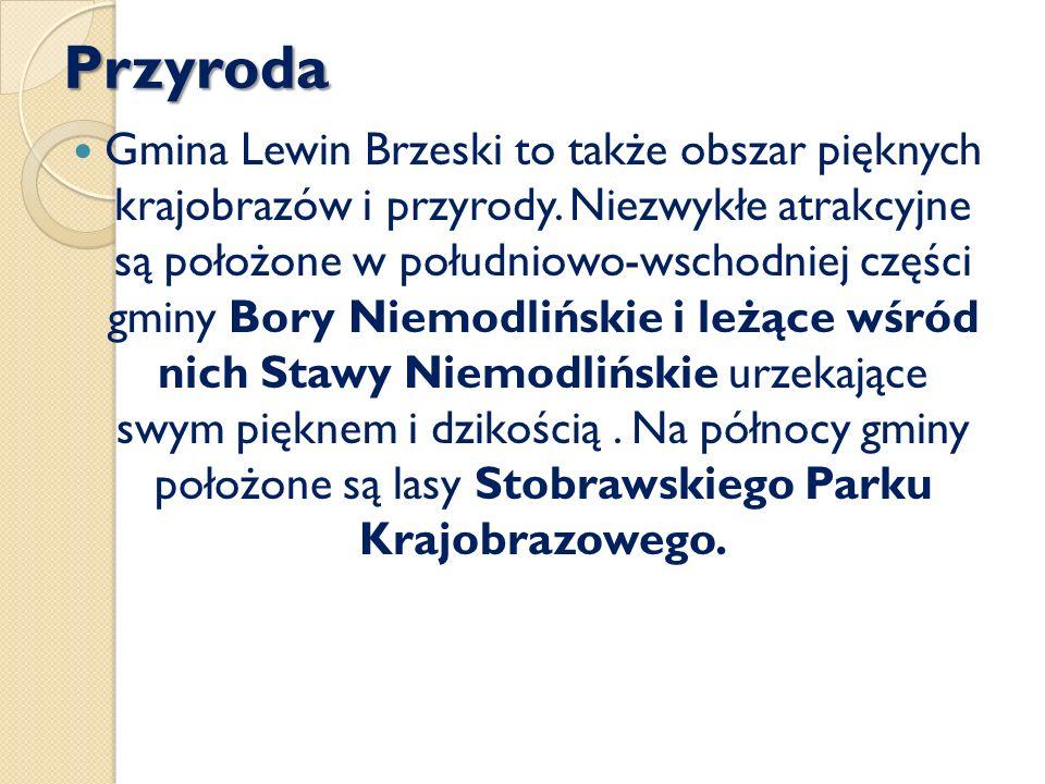 Przyroda Gmina Lewin Brzeski to także obszar pięknych krajobrazów i przyrody. Niezwykłe atrakcyjne są położone w południowo-wschodniej części gminy Bo