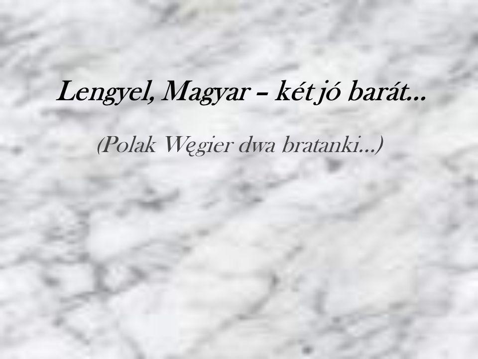Ma ł o jest krajów po łą czonych tak silnymi wi ę zami przyja ź ni jak Polska i W ę gry.
