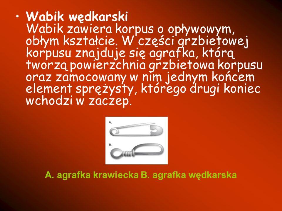 Wabik wędkarski Wabik zawiera korpus o opływowym, obłym kształcie. W części grzbietowej korpusu znajduje się agrafka, którą tworzą powierzchnia grzbie