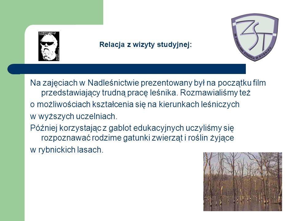 Na zajęciach w Nadleśnictwie prezentowany był na początku film przedstawiający trudną pracę leśnika.