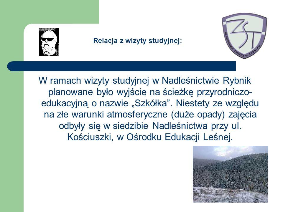 W ramach wizyty studyjnej w Nadleśnictwie Rybnik planowane było wyjście na ścieżkę przyrodniczo- edukacyjną o nazwie Szkółka.