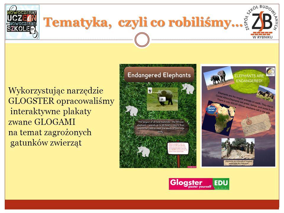 Tematyka, czyli co robiliśmy… Wykorzystując narzędzie GLOGSTER opracowaliśmy interaktywne plakaty zwane GLOGAMI na temat zagrożonych gatunków zwierząt