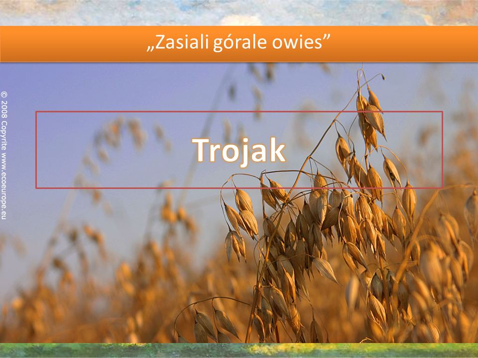 Trojak ( threesome , trio , in Polish) is a Silesian folk dance.