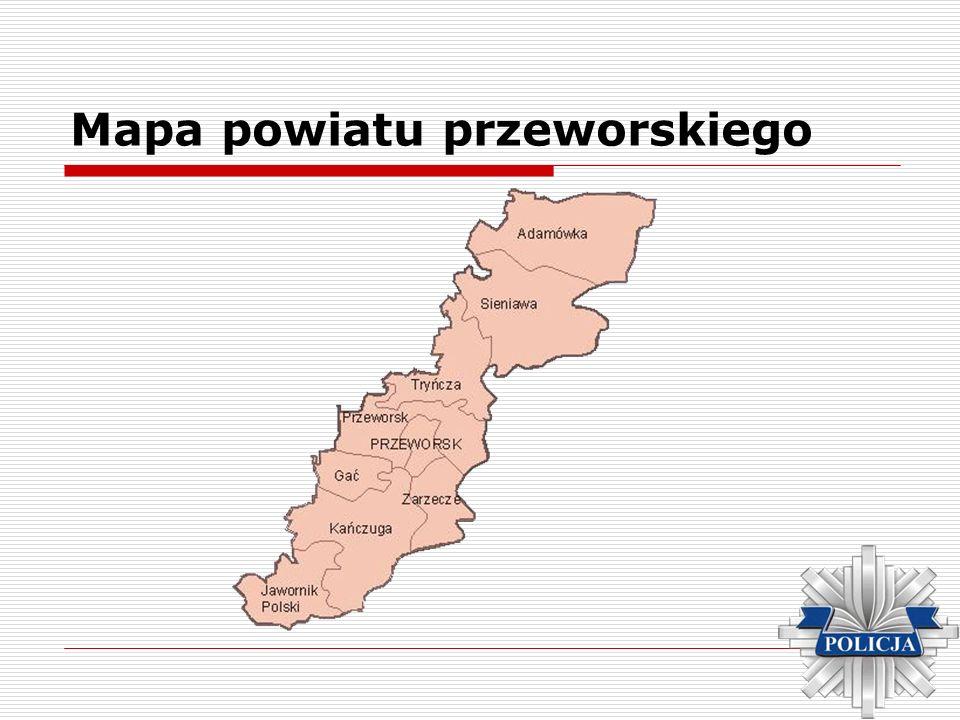 Liczba ludności w powiecie Opis OgółemKobietyMężczyźni osób % % % ogółem78 59110040 0245138 56749 miasto21 00926,710 95852,210 05147,8 wieś57 58273,329 16550,628 41749,4