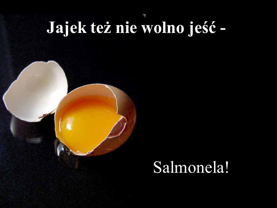 Salmonela! Jajek też nie wolno jeść -