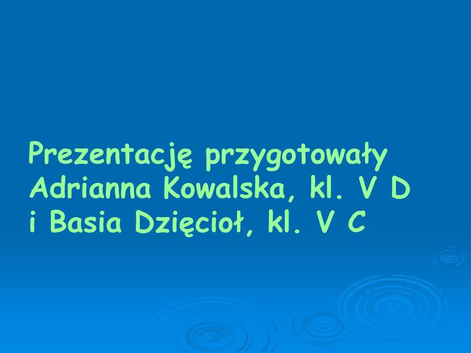 Prezentację przygotowały Adrianna Kowalska, kl. V D i Basia Dzięcioł, kl. V C