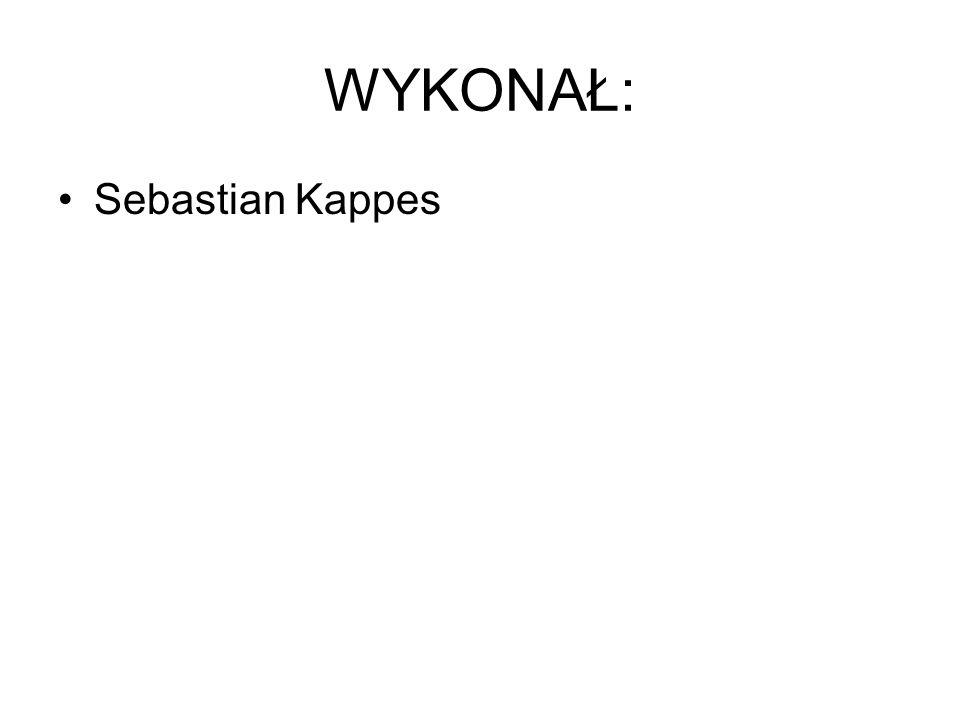 WYKONAŁ: Sebastian Kappes