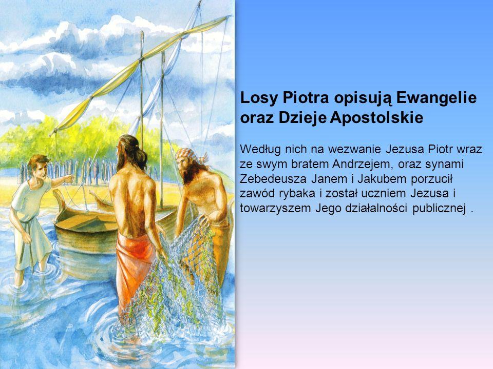 Losy Piotra opisują Ewangelie oraz Dzieje Apostolskie Według nich na wezwanie Jezusa Piotr wraz ze swym bratem Andrzejem, oraz synami Zebedeusza Janem