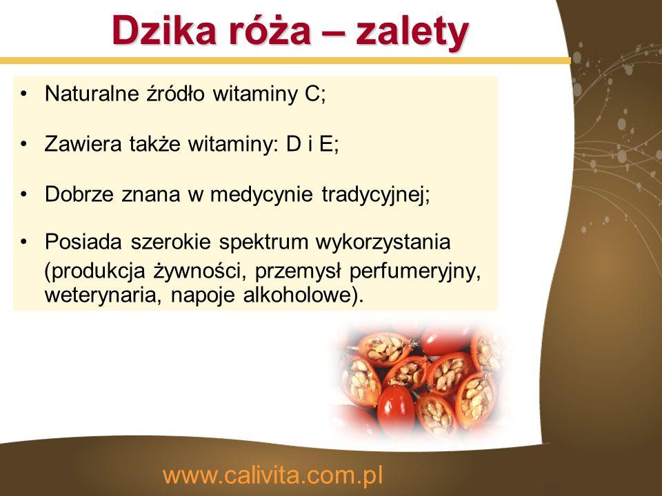 Dzika róża – zalety Naturalne źródło witaminy C; Zawiera także witaminy: D i E; Dobrze znana w medycynie tradycyjnej; Posiada szerokie spektrum wykorzystania (produkcja żywności, przemysł perfumeryjny, weterynaria, napoje alkoholowe).