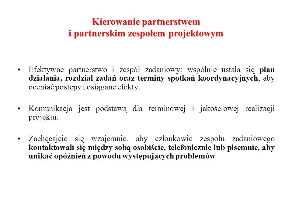 Efektywne partnerstwo i zespół zadaniowy: wspólnie ustala się plan działania, rozdział zadań oraz terminy spotkań koordynacyjnych, aby oceniać postępy