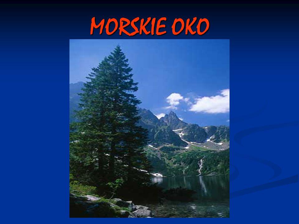 MORSKIE OKO
