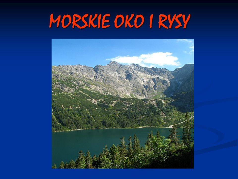 MORSKIE OKO I RYSY