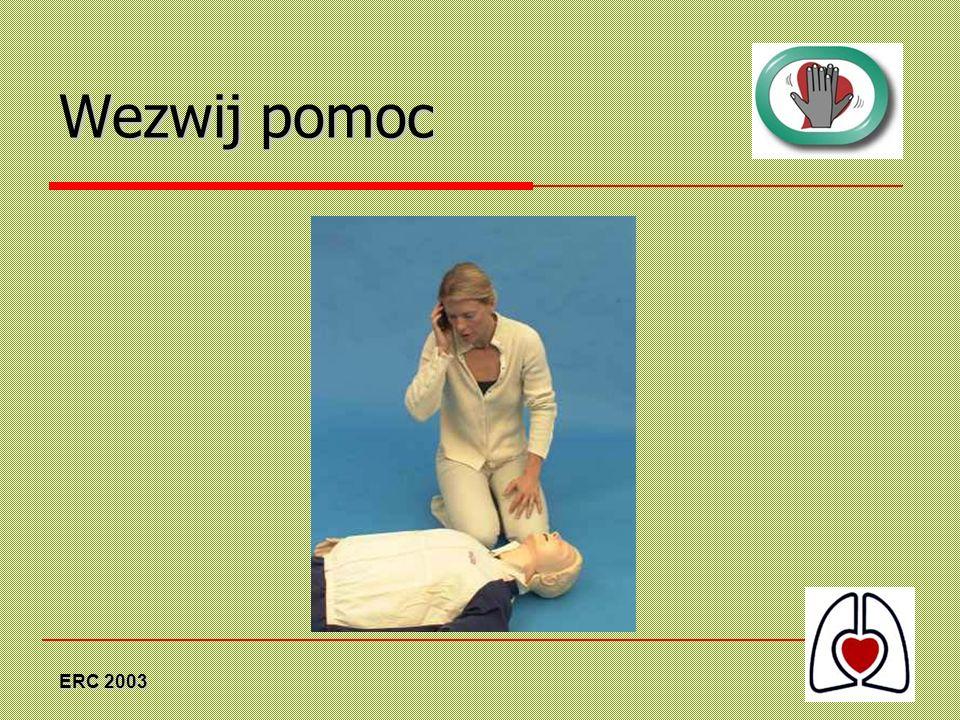 ERC 2003 Wezwij pomoc