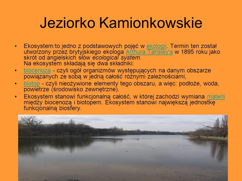 Jeziorko Kamionkowskie Ekosystem:to jedno z podstawowych pojęć w ekologii. Termin ten został utworzony przez brytyjskiego ekologa Arthura Tansley'a w