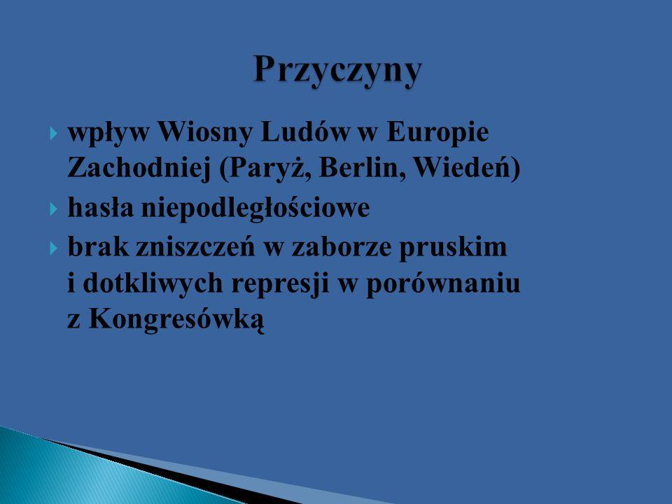 Komitety Narodowe w Poznaniu i w Krakowie Lwowska Rada Narodowa dyktatorem został Ludwik Mierosławski