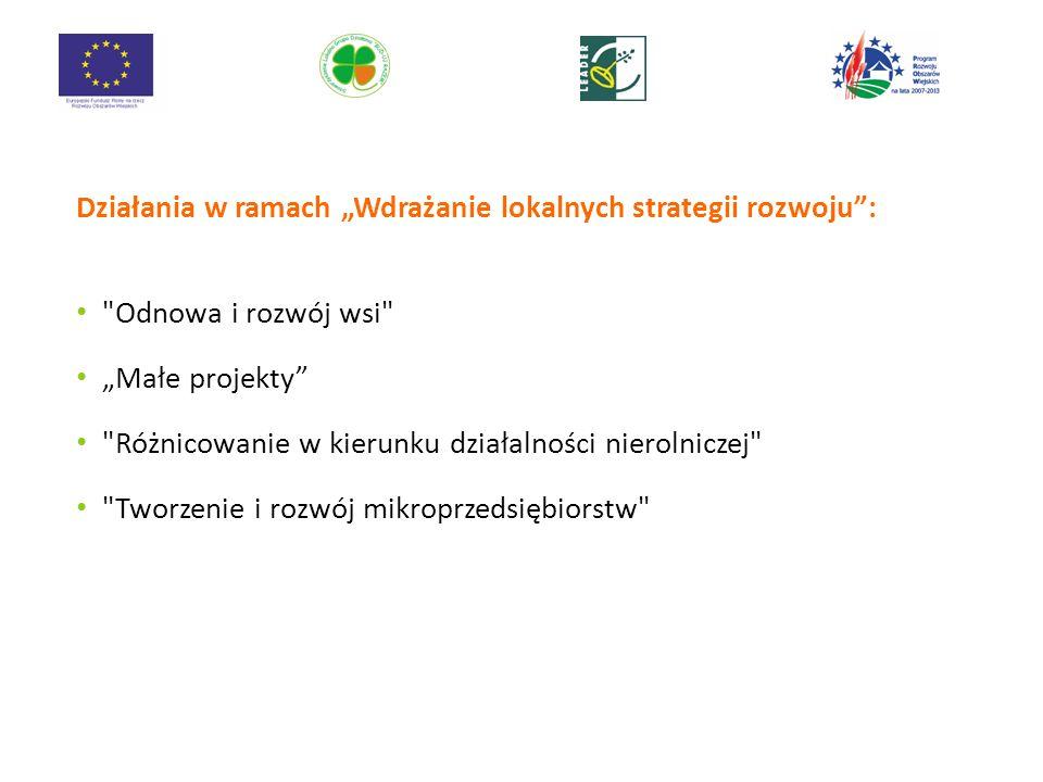 Działania w ramach Wdrażanie lokalnych strategii rozwoju: Odnowa i rozwój wsi Małe projekty Różnicowanie w kierunku działalności nierolniczej Tworzenie i rozwój mikroprzedsiębiorstw 11