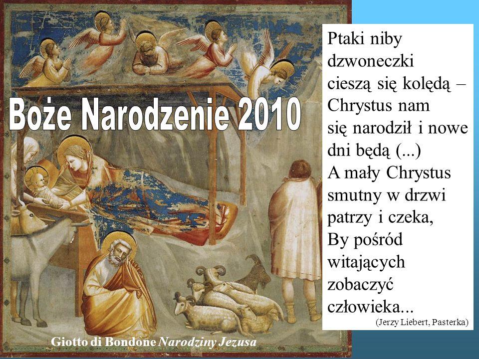 Giotto di Bondone Narodziny Jezusa Ptaki niby dzwoneczki cieszą się kolędą – Chrystus nam się narodził i nowe dni będą (...) A mały Chrystus smutny w