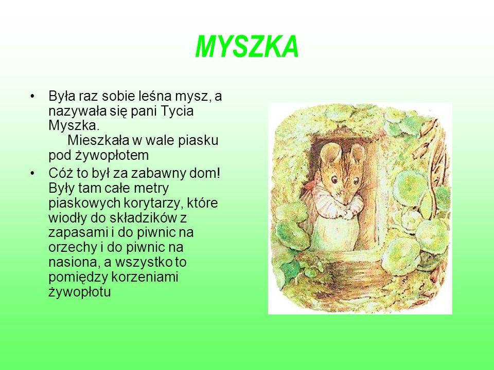 MYSZKA Była raz sobie leśna mysz, a nazywała się pani Tycia Myszka. Mieszkała w wale piasku pod żywopłotem Cóż to był za zabawny dom! Były tam całe me