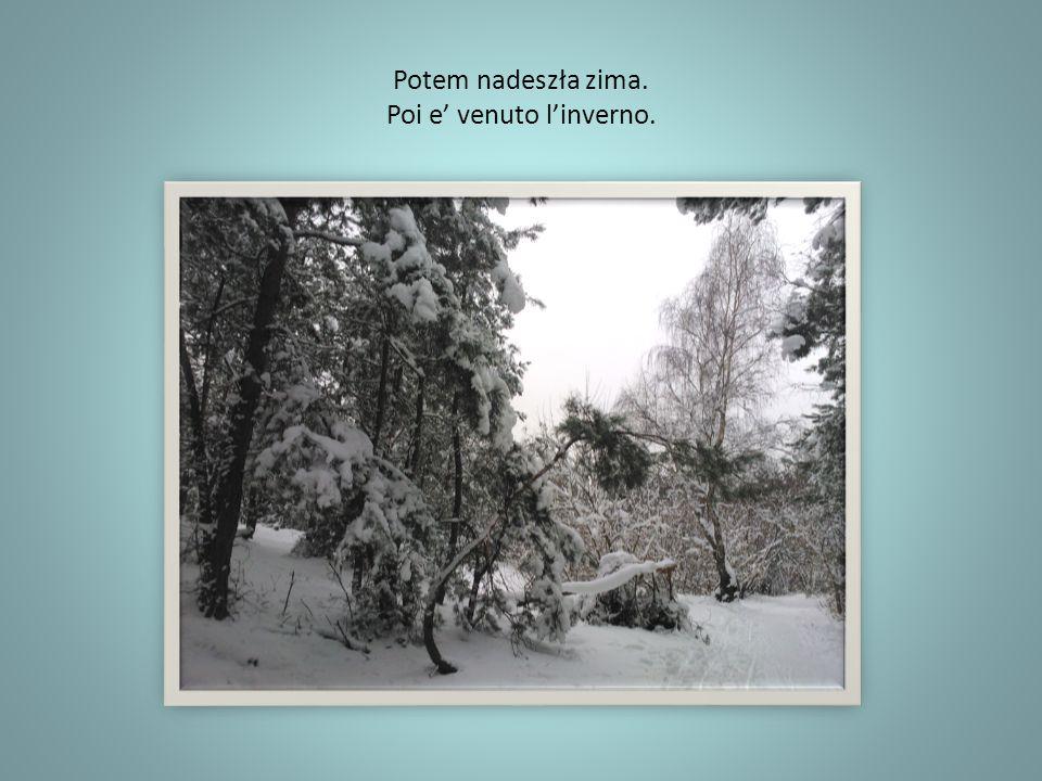 Potem nadeszła zima. Poi e venuto linverno.
