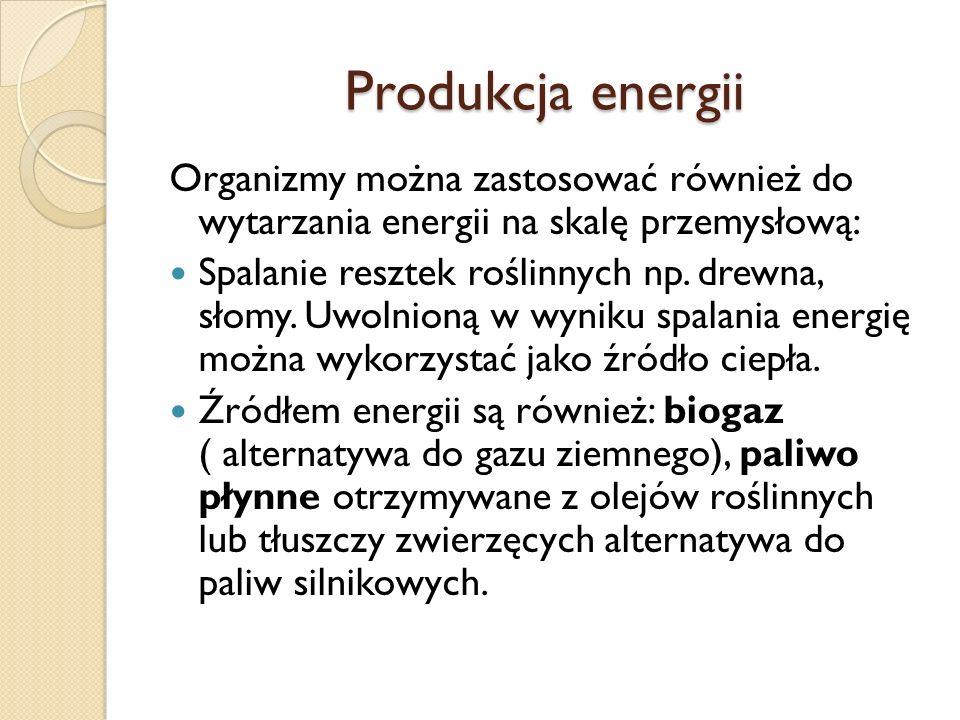 Produkcja energii Organizmy można zastosować również do wytarzania energii na skalę przemysłową: Spalanie resztek roślinnych np. drewna, słomy. Uwolni