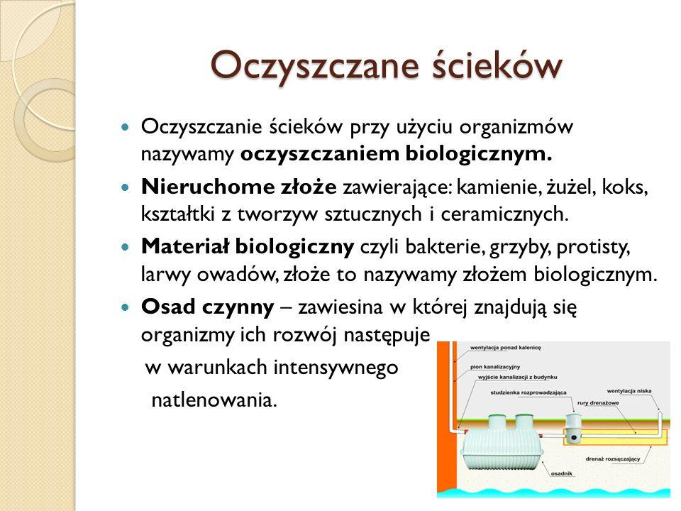 Oczyszczane ścieków Oczyszczanie ścieków przy użyciu organizmów nazywamy oczyszczaniem biologicznym. Nieruchome złoże zawierające: kamienie, żużel, ko