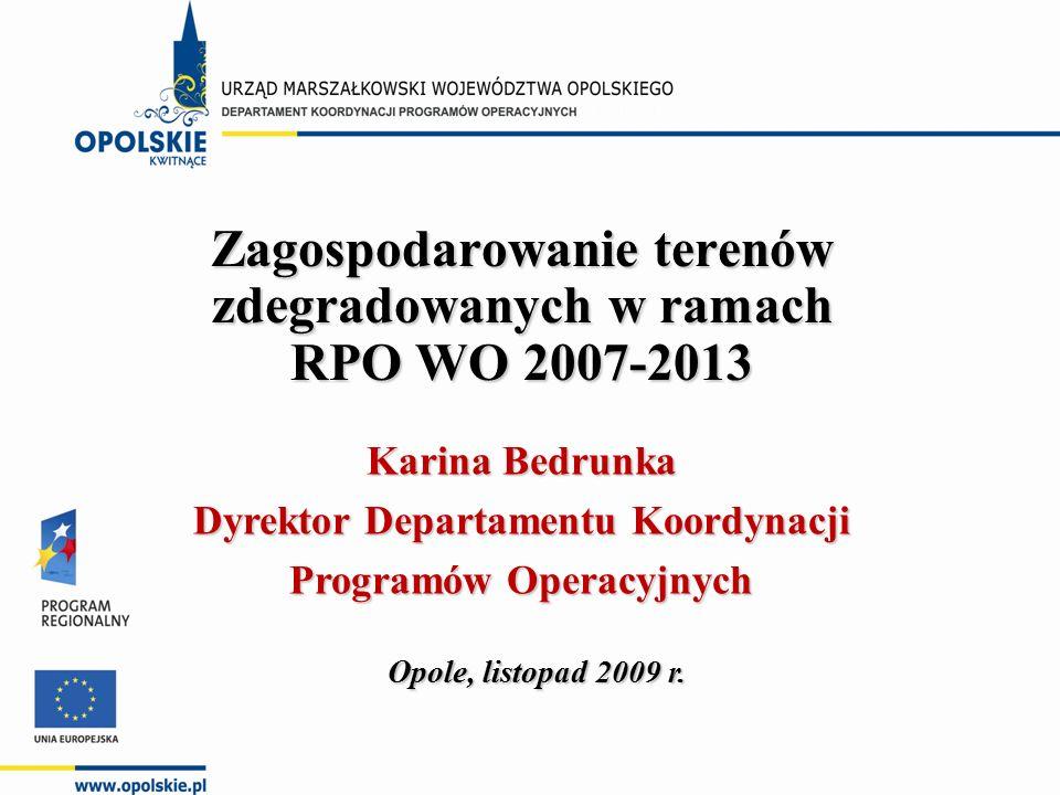 Zagospodarowanie terenów zdegradowanych w ramach RPO WO 2007-2013 Opole, listopad 2009 r.