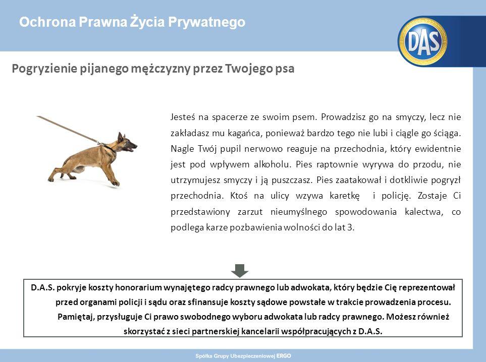 Ochrona Prawna Życia Prywatnego Jesteś na spacerze ze swoim psem.