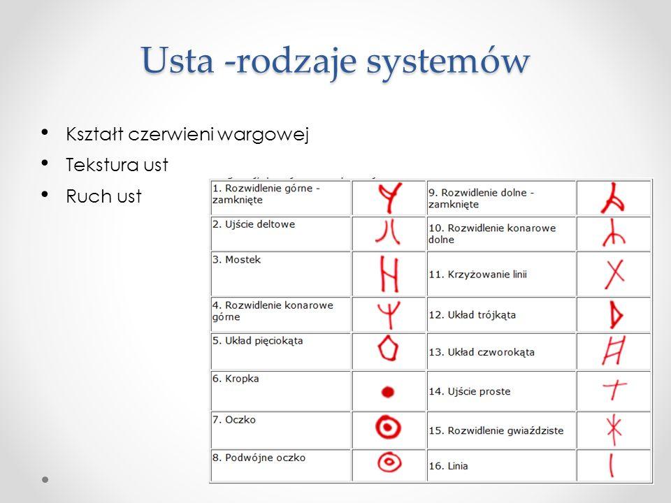 Usta -rodzaje systemów Kształt czerwieni wargowej Tekstura ust Ruch ust