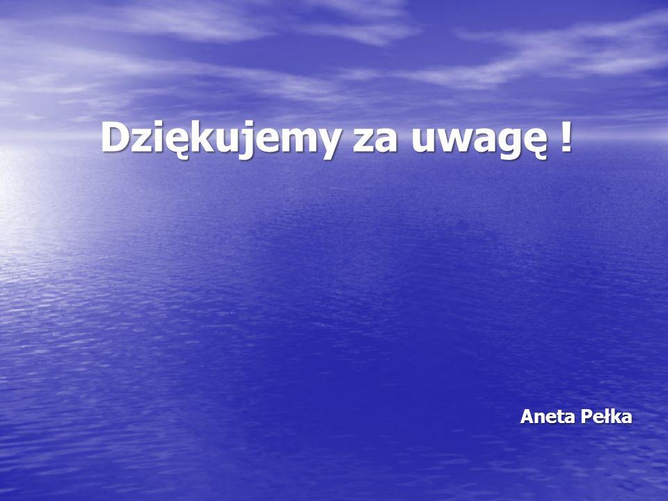 Dziękujemy za uwagę ! Aneta Pełka