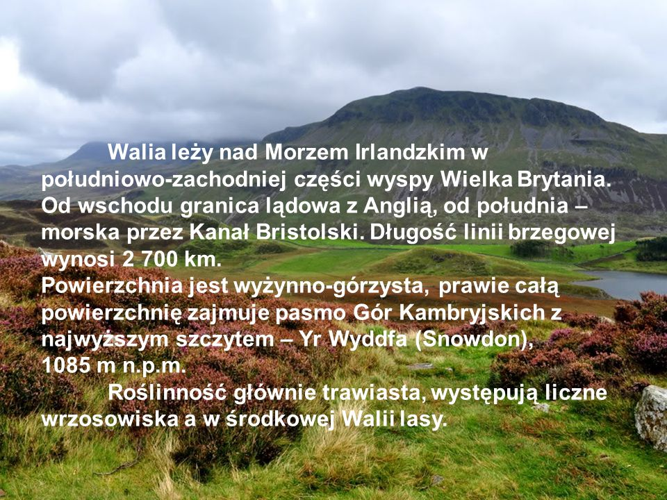 Walia leży nad Morzem Irlandzkim w południowo-zachodniej części wyspy Wielka Brytania. Od wschodu granica lądowa z Anglią, od południa – morska przez