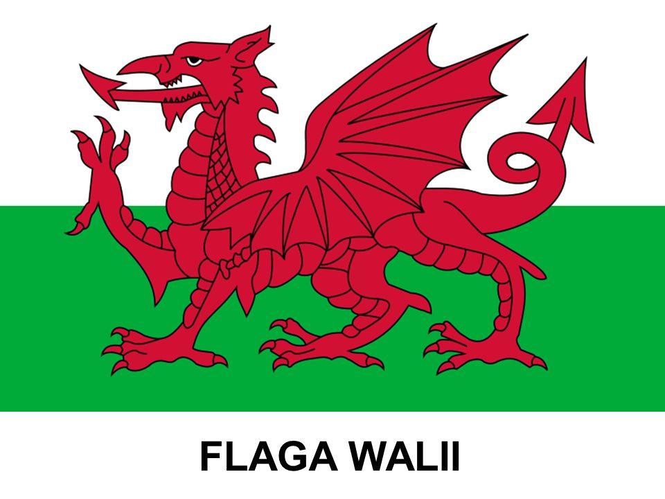 Park Narodowy Snowdonia (ang.Snowdonia National Park, wal.