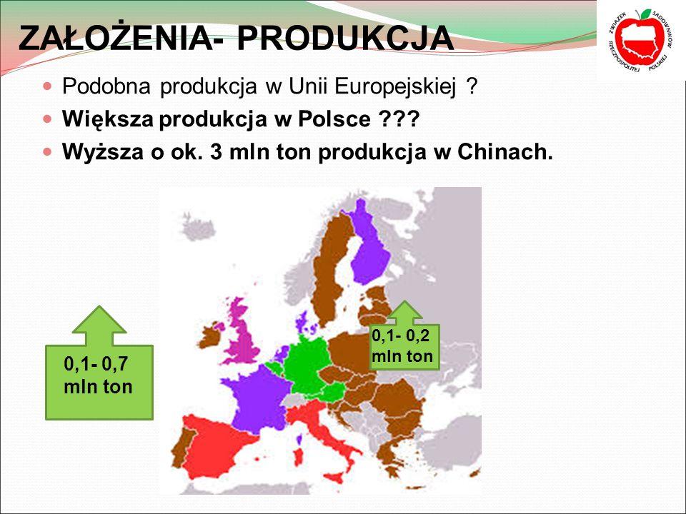 ZAŁOŻENIA- PRODUKCJA Podobna produkcja w Unii Europejskiej .