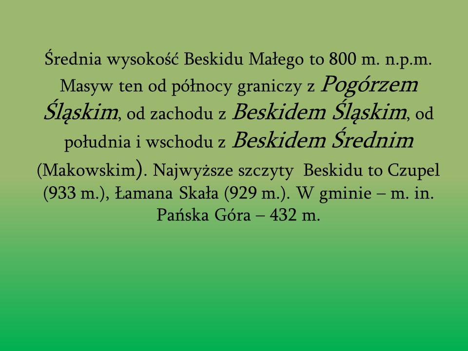 Północna cz ęść gminy le ż y na terenie Pogórza Ś l ą skiego, południowa w Beskidzie Małym.