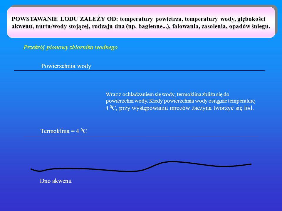 POWSTAWANIE LODU ZALEŻY OD: temperatury powietrza, temperatury wody, głębokości akwenu, nurtu/wody stojącej, rodzaju dna (np. bagienne...), falowania,