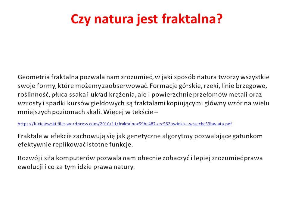 Czy natura jest fraktalna?
