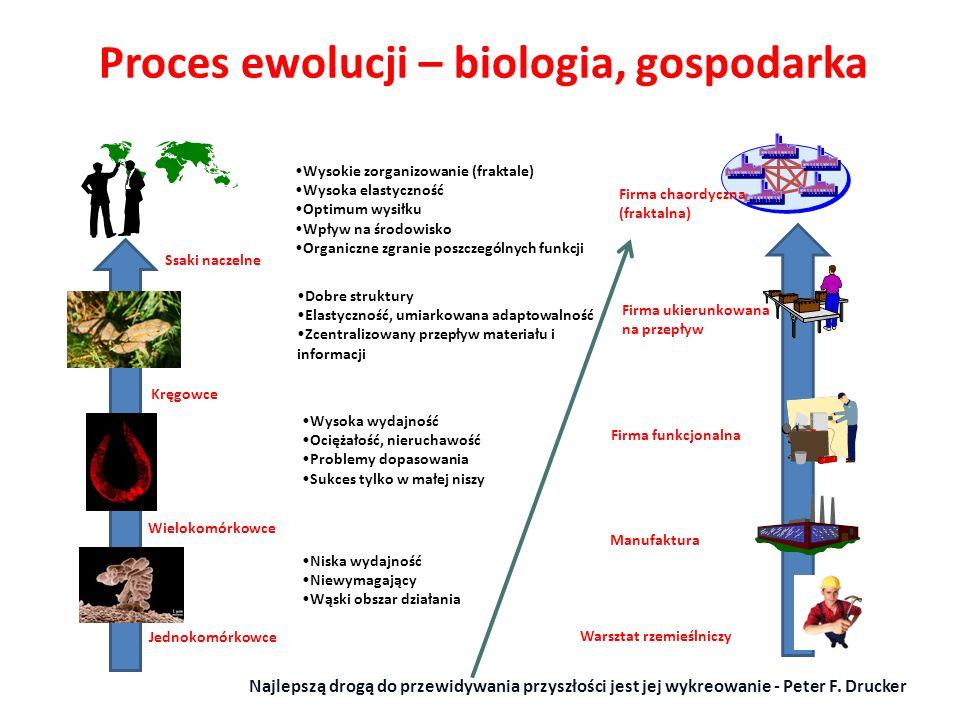 Proces ewolucji – biologia, gospodarka Ssaki naczelne Firma chaordyczna (fraktalna) Wysokie zorganizowanie (fraktale) Wysoka elastyczność Optimum wysi