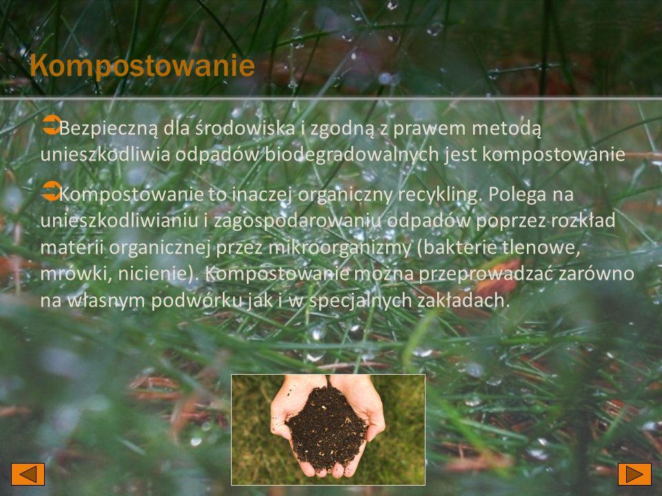 Kompostowanie  Bezpieczną dla środowiska i zgodną z prawem metodą unieszkodliwia odpadów biodegradowalnych jest kompostowanie  Kompostowanie to inaczej organiczny recykling.