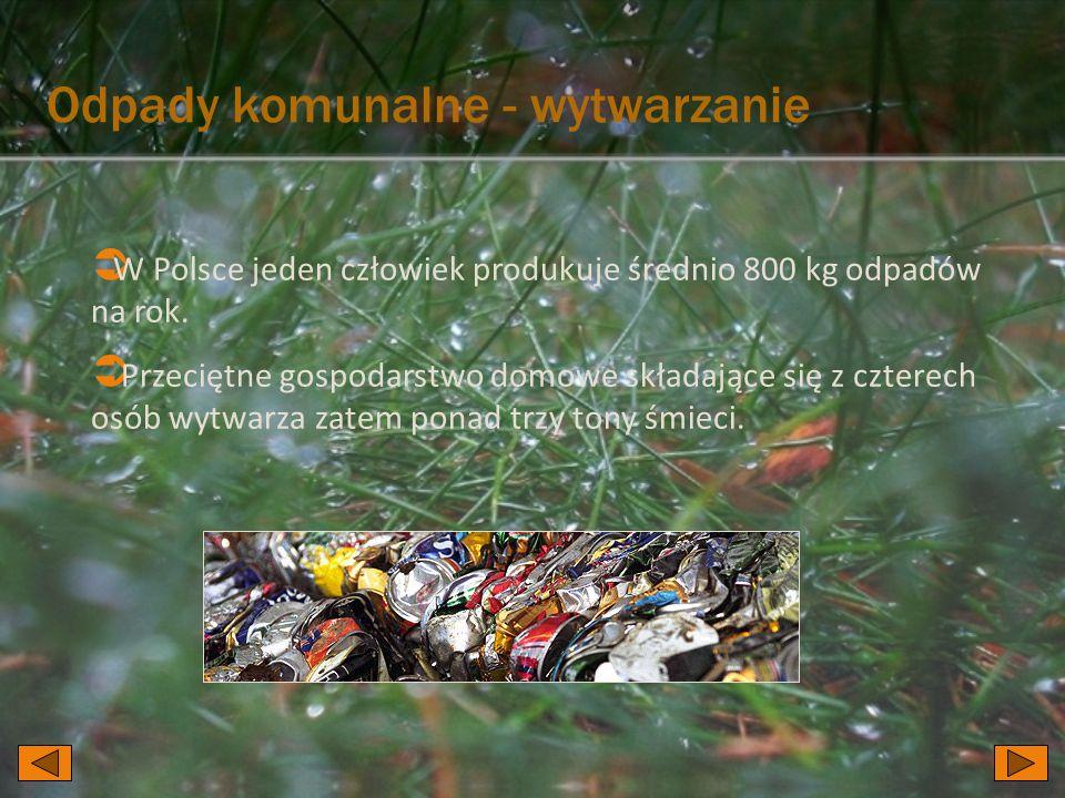  W Polsce jeden człowiek produkuje średnio 800 kg odpadów na rok.