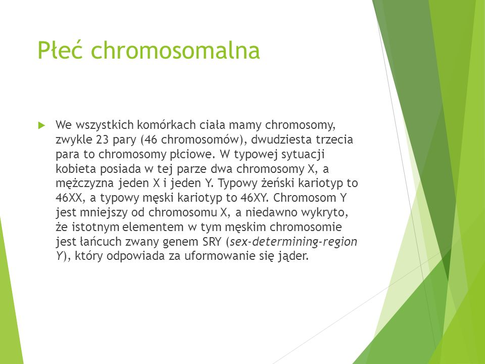 Płeć chromosomalna  We wszystkich komórkach ciała mamy chromosomy, zwykle 23 pary (46 chromosomów), dwudziesta trzecia para to chromosomy płciowe. W