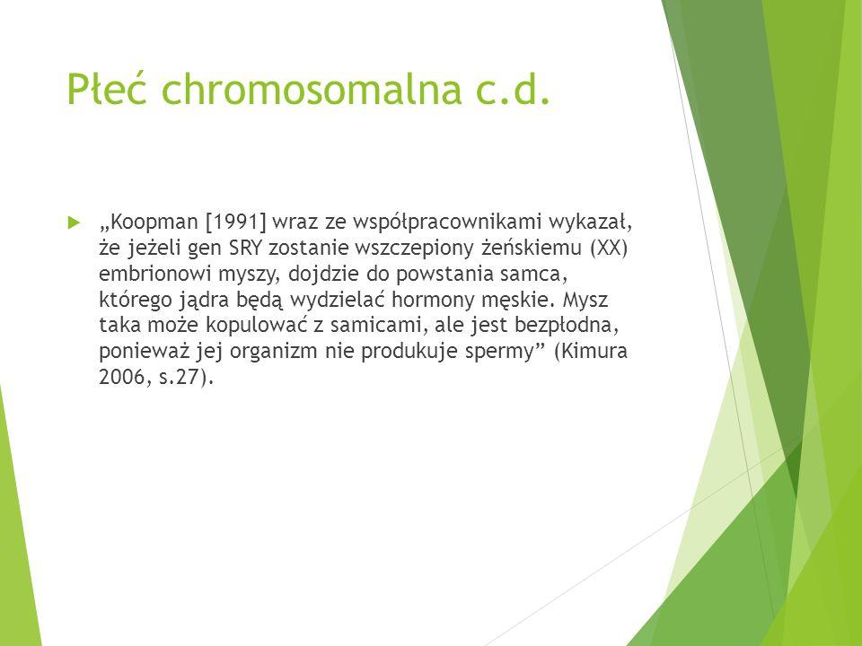 """Płeć chromosomalna c.d.  """"Koopman [1991] wraz ze współpracownikami wykazał, że jeżeli gen SRY zostanie wszczepiony żeńskiemu (XX) embrionowi myszy, d"""