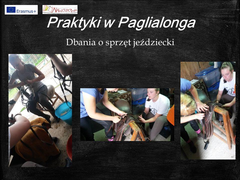 Praktyki w Paglialonga Dbania o sprzęt jeździecki