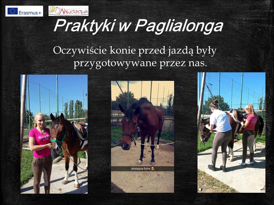 Praktyki w Paglialonga Oczywiście konie przed jazdą były przygotowywane przez nas.