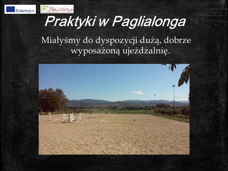 Praktyki w Paglialonga Miałyśmy do dyspozycji dużą, dobrze wyposażoną ujeżdżalnię.