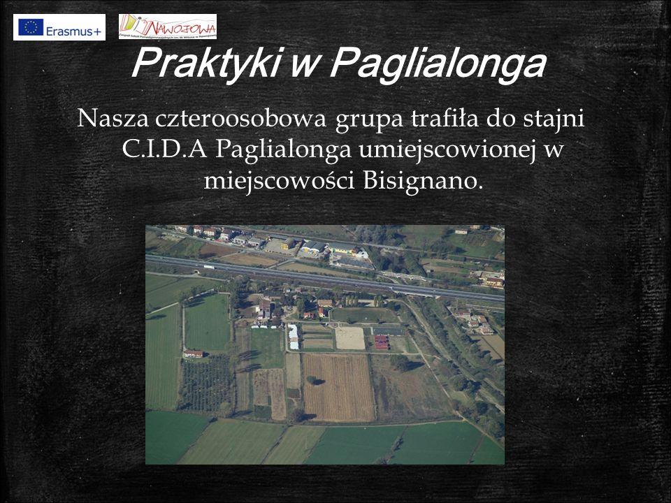 Praktyki w Paglialonga Nasza czteroosobowa grupa trafiła do stajni C.I.D.A Paglialonga umiejscowionej w miejscowości Bisignano.