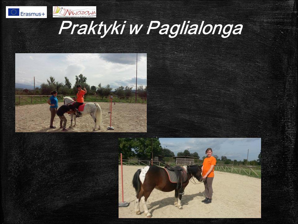 Praktyki w Paglialonga