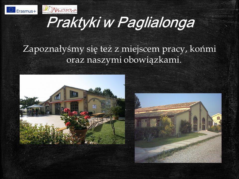 Praktyki w Paglialonga Zapoznałyśmy się też z miejscem pracy, końmi oraz naszymi obowiązkami.